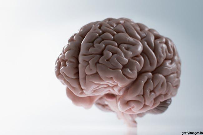 दिमाग के भाग का रंग