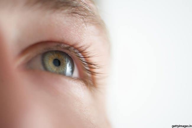मनुष्य की आंख