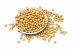 Soybean compound may inhibit HIV