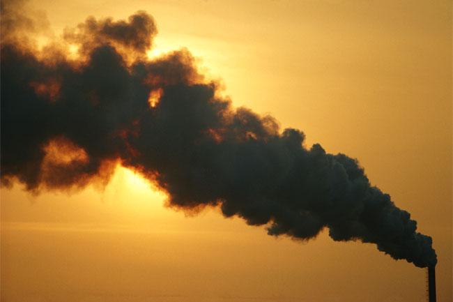 पर्यावरण विषाक्त पदार्थों से बचें