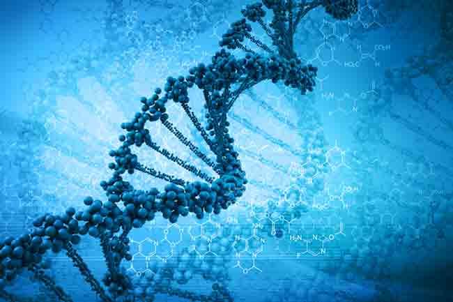 आनुवंशिक कारण