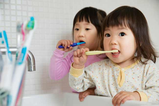 Toothbrush is Indispensible to Oral Hygiene