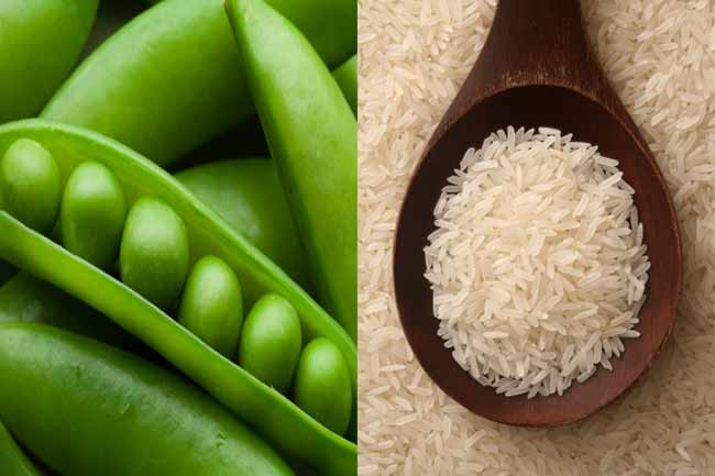 Pea and Rice Protein Powder