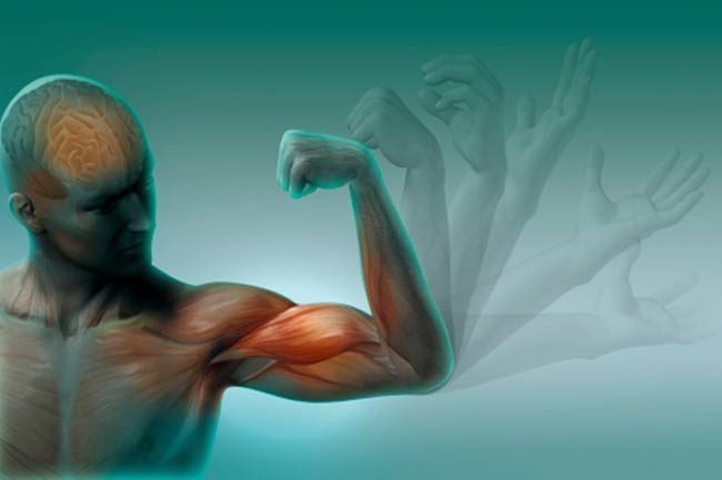 Causes Muscle Vibrations