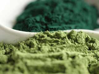 Super-food Spirulina helps to shed those extra kilos