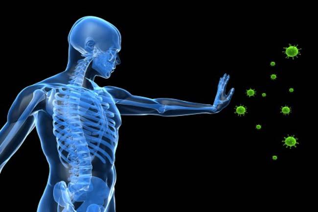 रोग प्रतिरोधी क्षमता में मजबूती