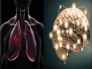 Healthy Lungs are linked to Stronger Brain