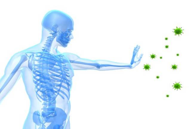 रोग प्रतिरोधक क्षमता बढ़ती है