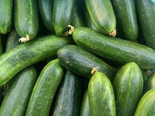 Eat Cucumber to Treat Cancer and Diabetes