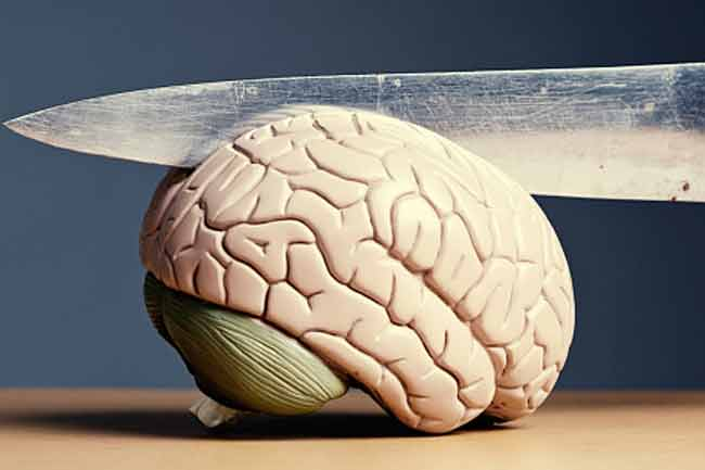Weight Lifting and Brain