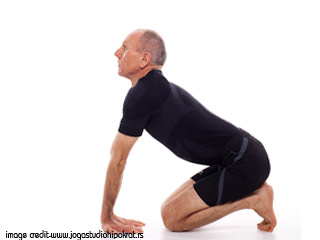 Yoga For Diabetes - Manduk Asana