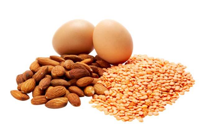 प्रोटीन, फाइबर और गुड फैट