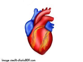 हृदयाघात और कोरोनरी हार्ट डिजीज का इलाज कैसे करें