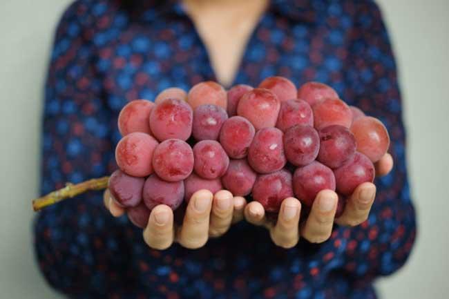 लाल अंगूर