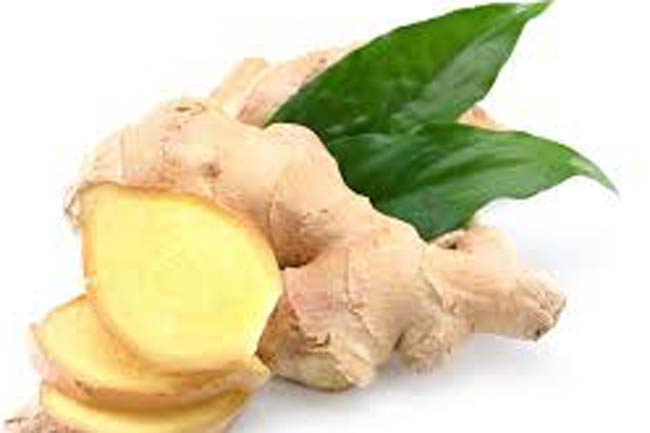 Ginger and Galangal