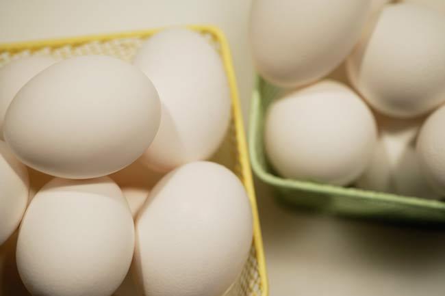 Whole Egg Diet