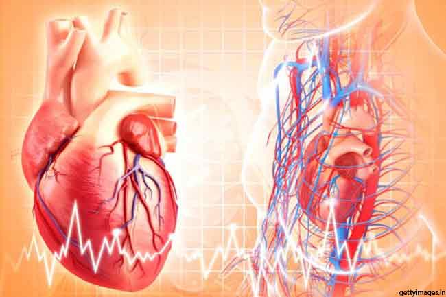 दिल की सेहत बनाये