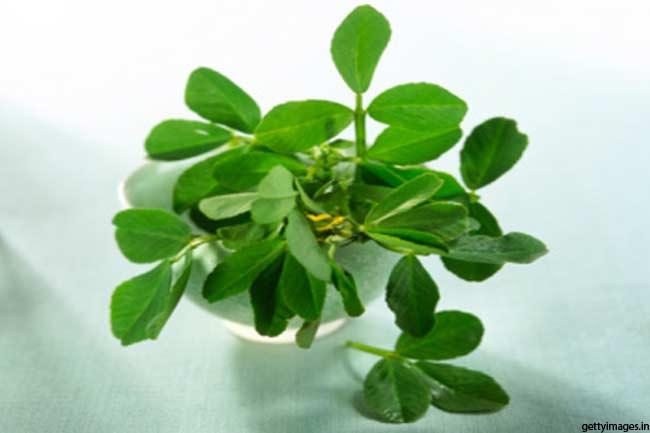 हरी मेथी