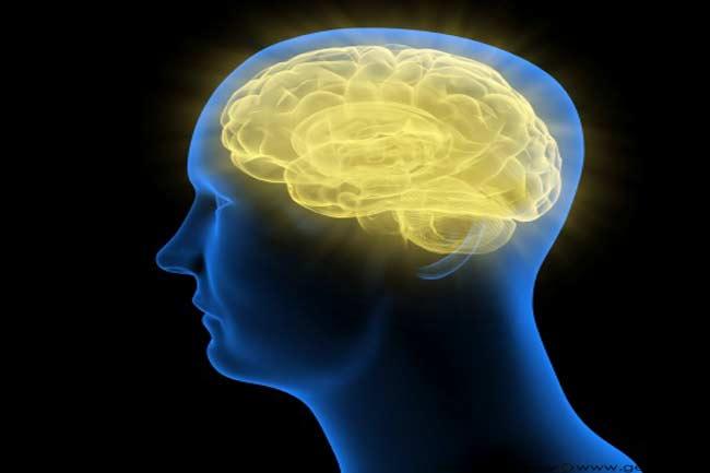 मस्तिष्क से जुड़ा सच