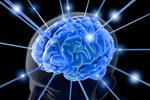अल्ट्रासाउंड से बढ़ती है दिमाग की गतिविधि