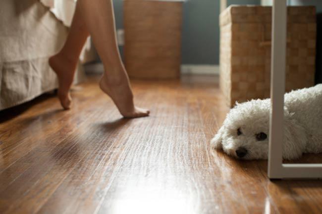 Foot Yoga