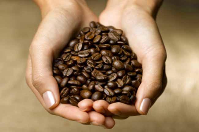 कॉफी बीन्स और ऑलिव ऑयल