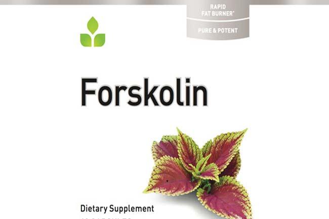 फोर्सकोलिन (Forskolin)
