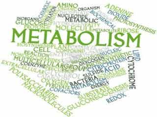 आदतें जो बिगाड़ सकती हैं मेटाबॉलिज्म