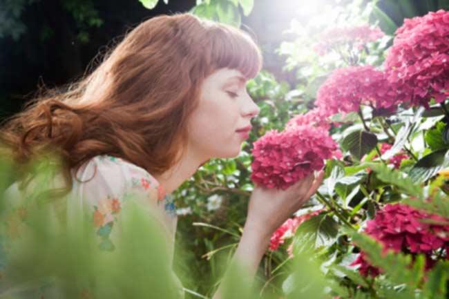 सुगंध लेने में मदद करता