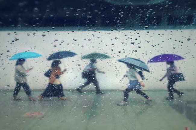 बरसात और बीमारियां