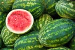 Health Benefits you can Derive from Watermelon