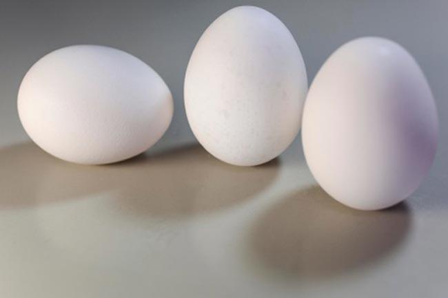 गुणों की खान है अंडा