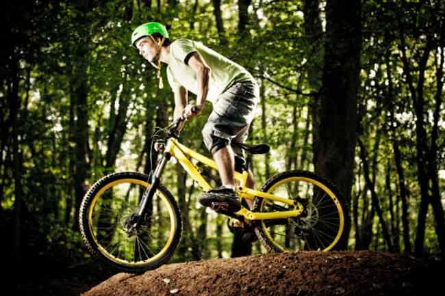 सही साइकिल का चुनाव