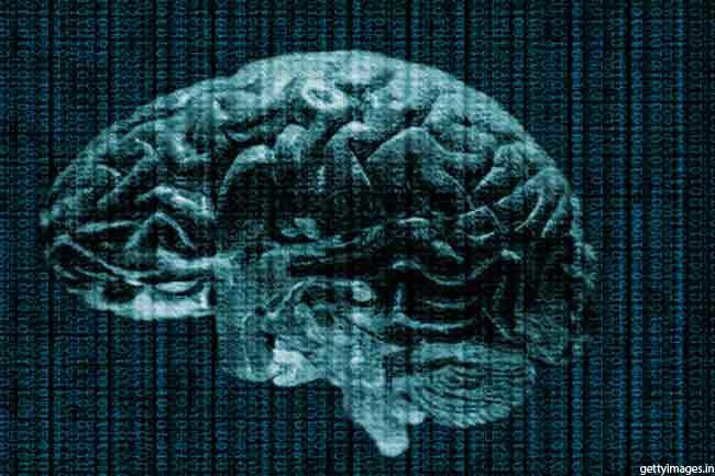 मस्तिष्क में लचीलापन