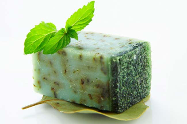 Peppermint (Soap or Shampoo)