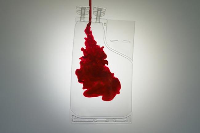 रक्त शुद्धी और हर्ब