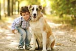 Puppy Love:Dogs can Help Children with Cancer
