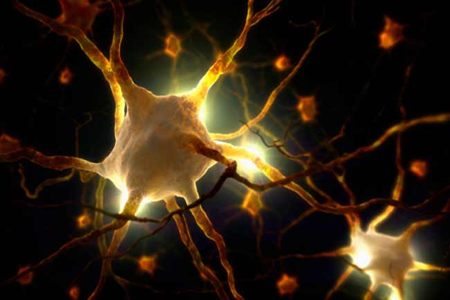 तंत्रिका क्षति (नर्व डैमेज)