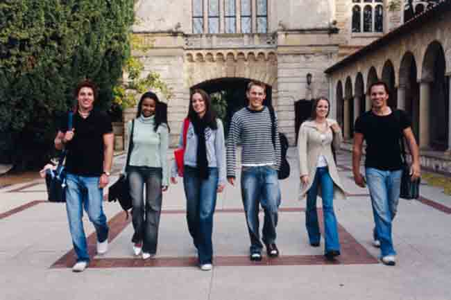 Why we all want to go back to college