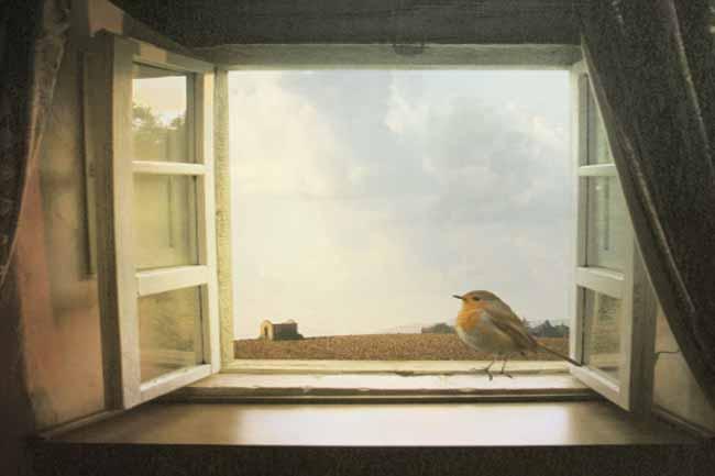 खिड़कियां खुली रखें