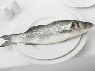 गर्भावस्था में मछली के सेवन से बच्चे में एडीएचडी का संबंध