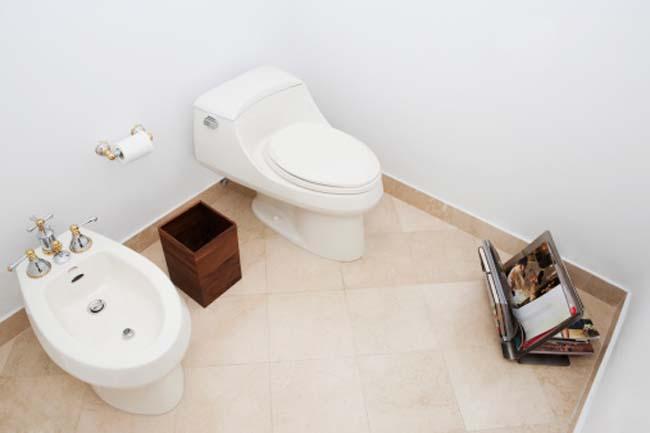 Bathroom Hygiene