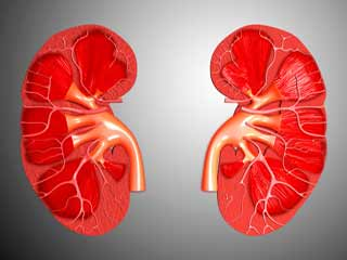 What is the long term outlook of Kidney Dysplasia?