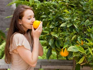 Oranges:A Tangy Way to Lose Weight