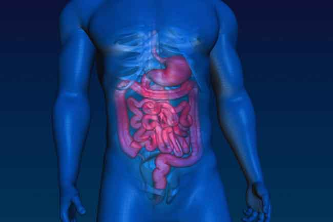 Intestinal Problems