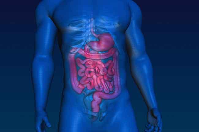 Intestinal Problems