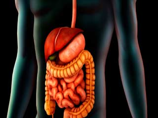 Colon Hydrotherapy Process