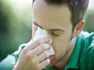 एलर्जी से छुटकारा पाने के लिए इन हर्ब्स का लें सहारा