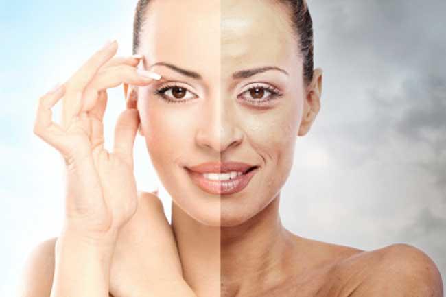 Decelerates Skin Ageing