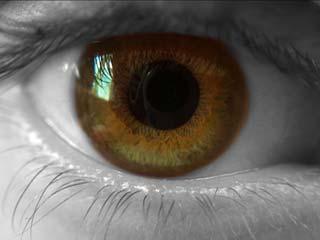Improve your eyesight with ayurveda